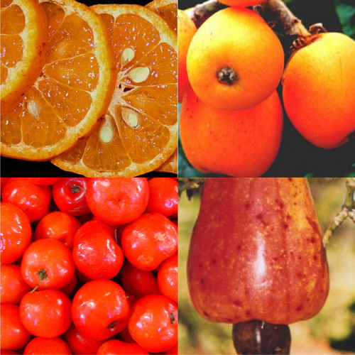 senai-frutas.jpg
