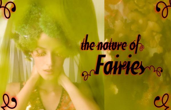 fairy-teaser5-m.jpg